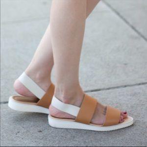 Everlane street sandals never worn! NWOT